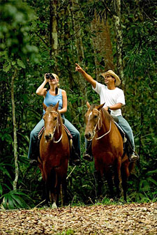 jungle trail on horse back
